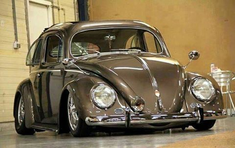 Can You Use Bug Bomb In A Car