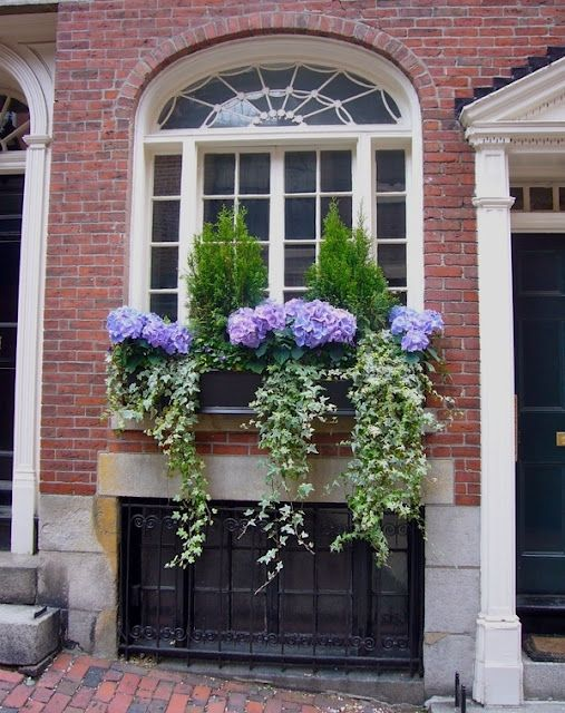 Purple with vines...