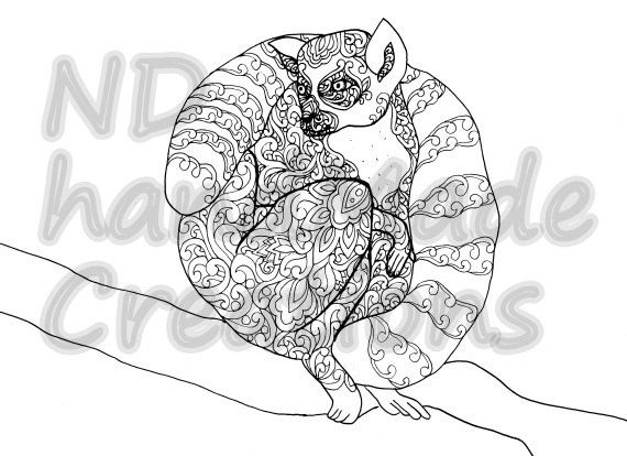 Paisley Doodle lemur N1 animal Pattern Printable Coloring Book Sheet Adults children PDF JPG Instant Download Illustration Clip Art Digital - pinned by pin4etsy.com
