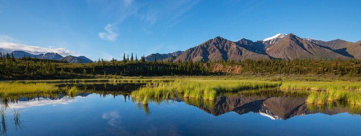 Un viaggio in Alaska è un'esperienza esaltante, ispiratrice di moltissime canzoni, poesie e film.