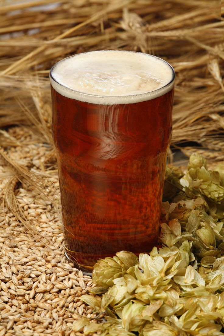 Lyst til å prøve å brygge øl selv men vet ikke helt hvor du skal begynne?