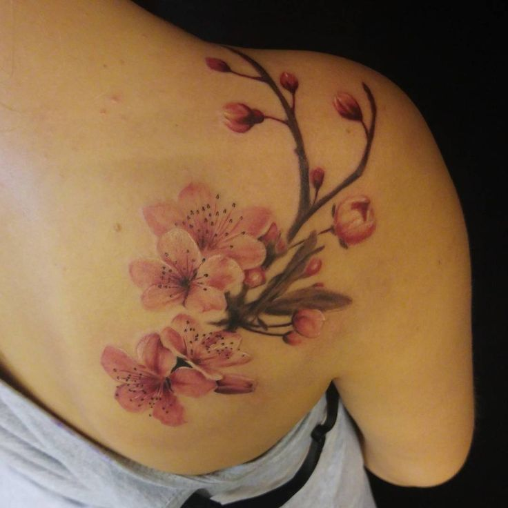 #tattoo #cherryblossomtattoo #pink #flowers #cheyenne #route66 #bielefeld #germany