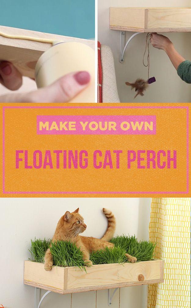 Cat Perch Box
