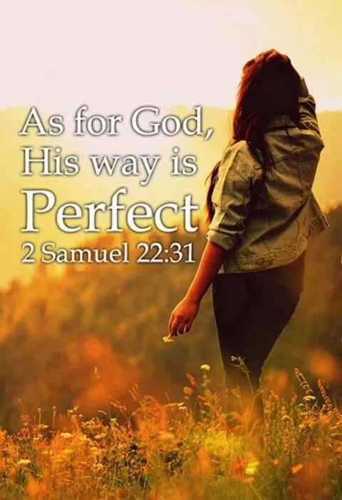 26 best images about 2 Samuel on Pinterest | Savior, The ...