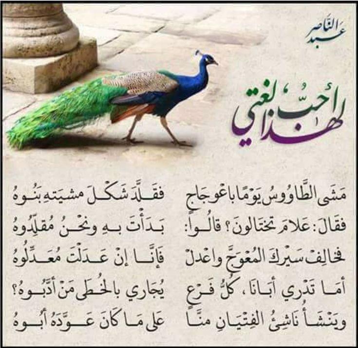 قال احدهم وينشأ ناشيء الفتيان منا على ما كان عوده ابوه Arabic Poetry Islamic Phrases Good Morning Arabic