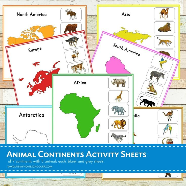Best 20 South America Map Ideas On Pinterest: Best 20+ Continents Activities Ideas On Pinterest