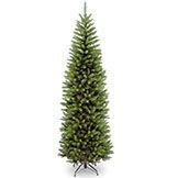 Slim & Pencil Christmas Trees