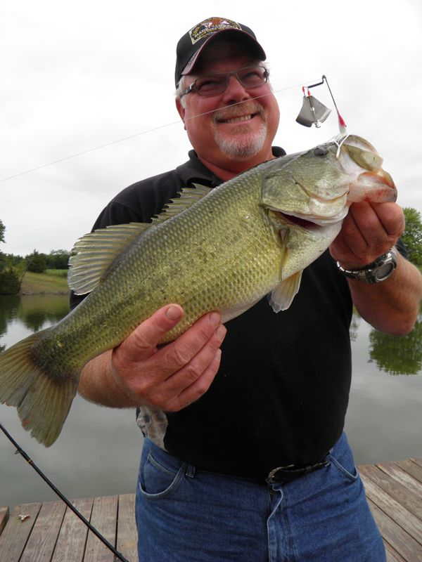 63 best images about gone fishing on pinterest bass for Top water bass fishing