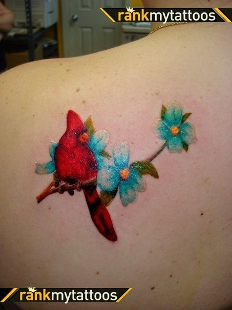 cardinal tattoos google search first tattoo ideas in memoriam of mom pinterest teal. Black Bedroom Furniture Sets. Home Design Ideas