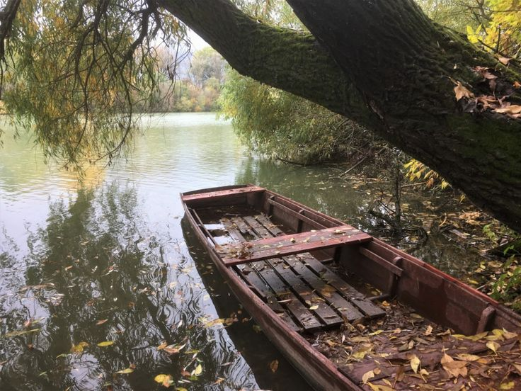 Hol szőke sellő lenge szellő játszik a Tiszán | Edenpont