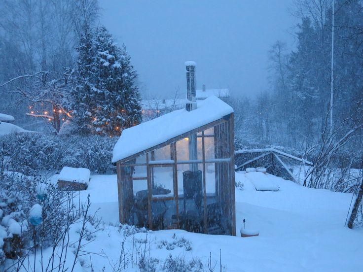 Piękne szklarnie cedrowe w zimowej scenerii. Zdjęcia zostały wykonane w śnieżnej Norwegii. Najstarsza taka szklarnia z czerwonego cedru ma już 70 lat i nadal służy swoim właścicielom!