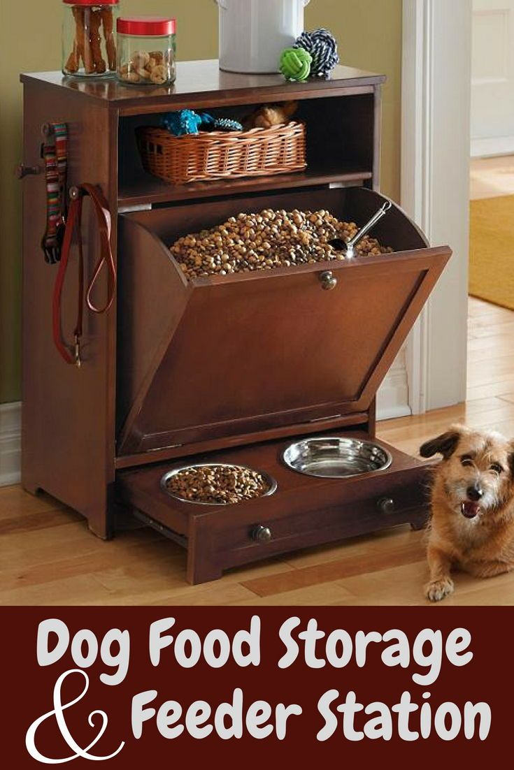 dress - Food dog stylish storage video