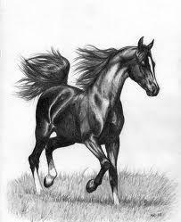 tecknade hästar - Sök på Google