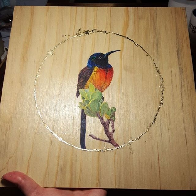 Just completed the Orange Breasted Sunbird in my Wings and Wild Things series.  #art #inspiration #plywood #drawing #painting #wingsandwildthings #acrylic #wip #orangebreastedsunbird #artnerd2016 #goldleaf