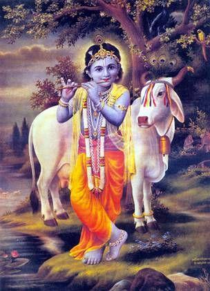 Lord Krishna Playing on His Flute:   Happy Krishna-Janmastami [Krishna's Birthday]; Sri Narasingha Chaitanya Ashram