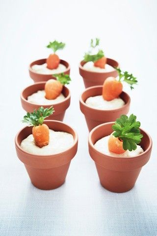 Love the terra cotta pots as a canape holder jf for Canape holders