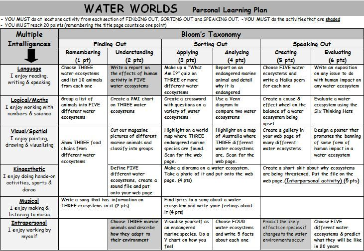 Water Worlds Personal Learning Plan. A Gardner's Multiple Intelligence and Bloom's Taxonomy grid of activities on water ecosystems