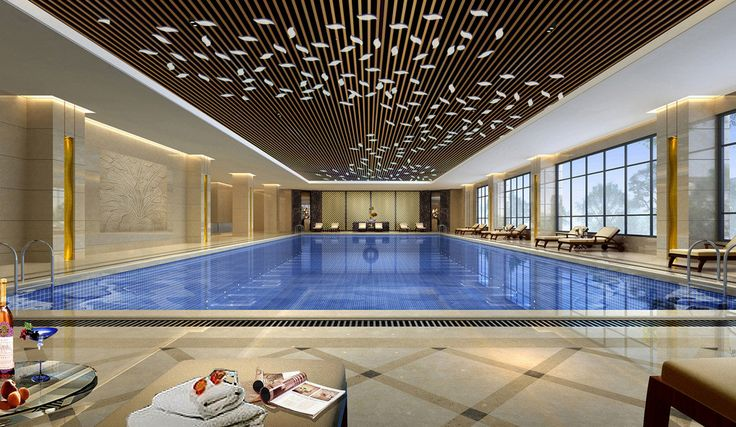 49 Best Pool Ceilings Images On Pinterest Architecture Swimming Pools And Pools