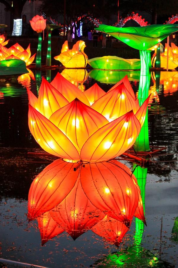 Texas State Fair - Chinese Lantern Festival by Stacy bogan, via Behance