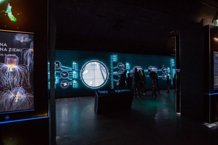 Gallery of Hydropolis / ART FM - 13