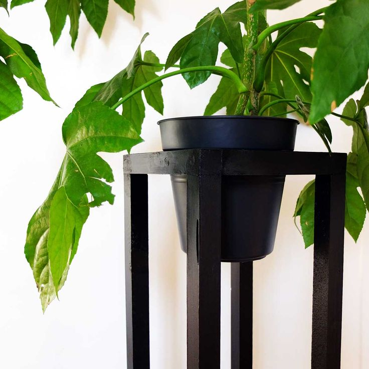 DIY Plant Stand \ photo © Misc \\ #Misc #DIY #MiscWebzine