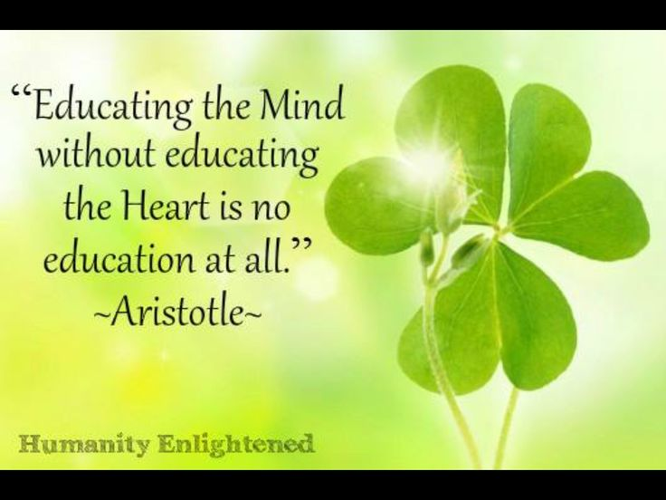 Aristotle Quote About Wisdom: 17 Best Images About Aristotle On Pinterest