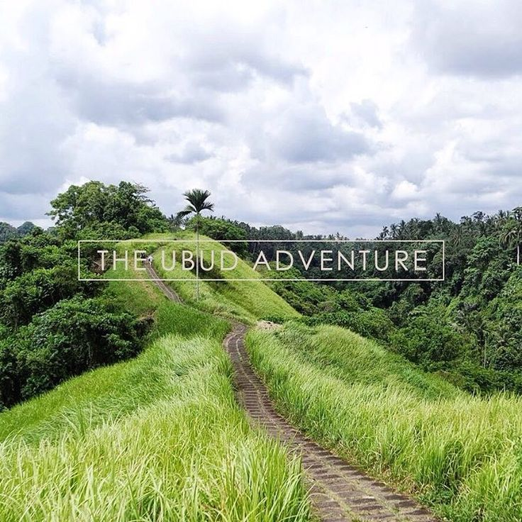 Break off the comfort zone, live up to the challenge. The Ubud Adventure, one-with-nature excursion, your tales from the road. . More on our bespokes: bisma-eight.com/packages/ . . . . . #bismaeight #luxury #boutiquehotel #hotel #bestnewhotel #ubud #bali #campuhan #campuhanridge #campuhanridgewalk #ubudtrip #balitrip #travelpics #traveling #bepartofourstory