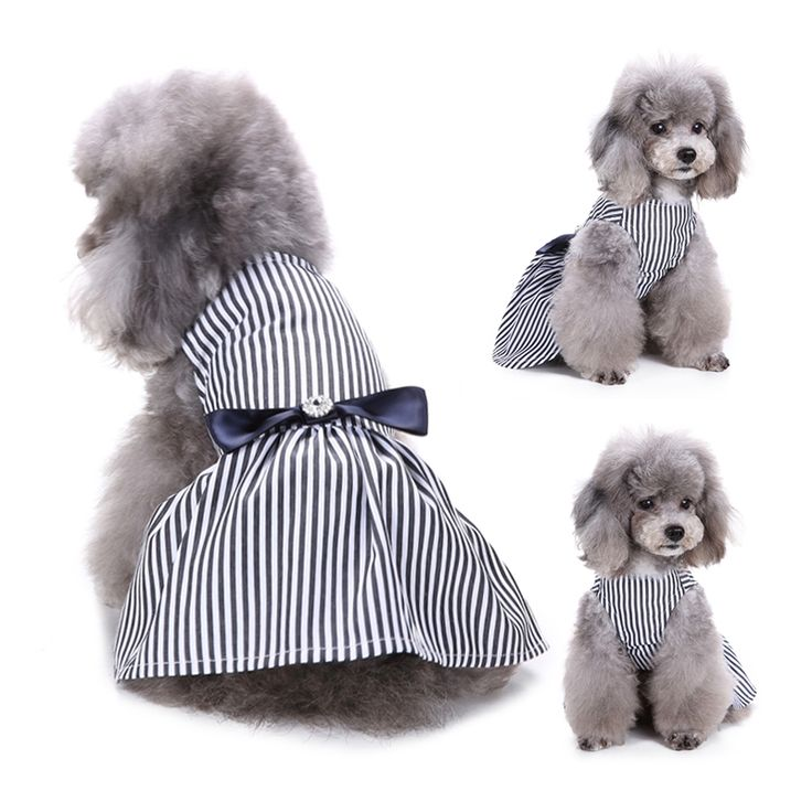 Princess Dog Dresses Pet Puppy Clothes Wedding Dress for Dogs Chihuahua Teddy Cat Skirt Summer Pet Apparel 30