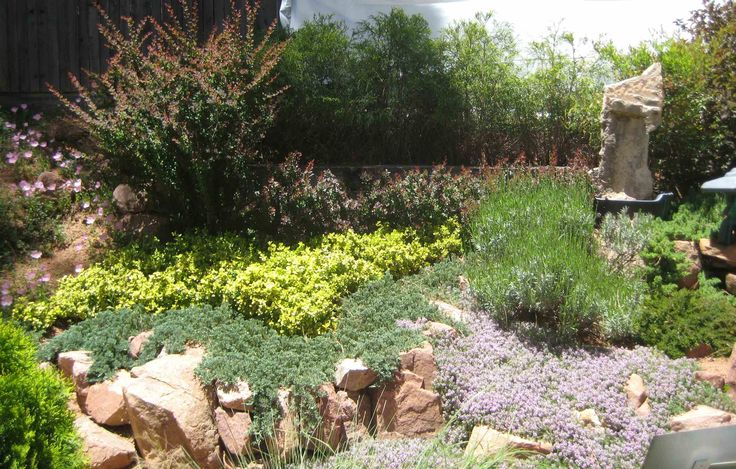 23 Best The Villages Fl Images On Pinterest Xeriscaping