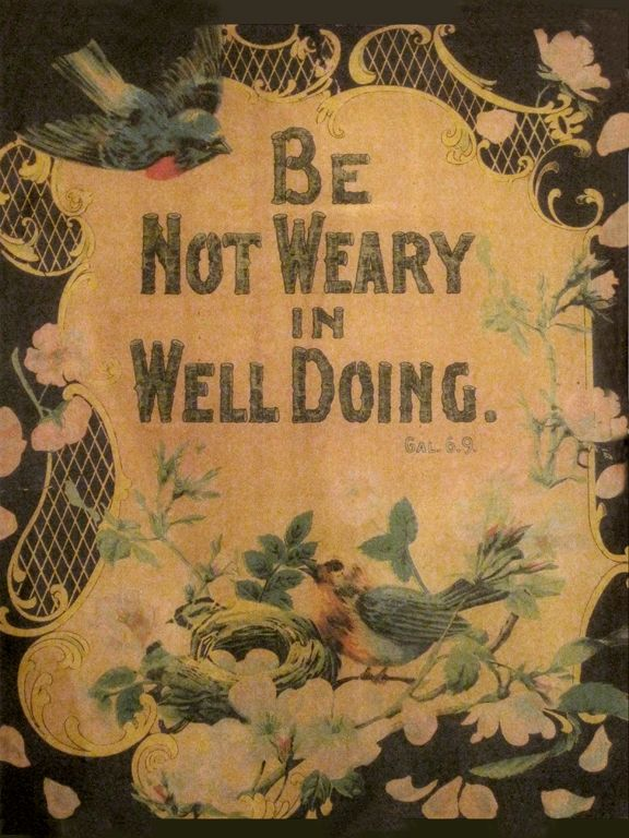Be not weary in well doing.Bluebirds, Birds Nests, Faith, Praise God, Christ, Well Said, Favorite Quotes, Like Quotes, Bible Verse
