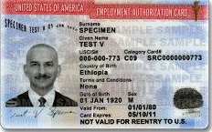 Immigrants require employment authorization to lawfully work in US.    Certain aliens who are temporarily in the United States may file a Form I-765, Application for Employment Authorization, to request an Employment Authorization Document (EAD). Other aliens who are authorized to work in the United States without restrictions should also use this form to apply for a document evidencing such authorization.