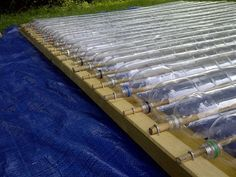 Use soda bottles mounted on bamboo canes as greenhouse panels