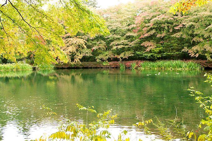 夏なら誰もが行きたい!軽井沢観光の人気スポットランキングTOP20 | RETRIP