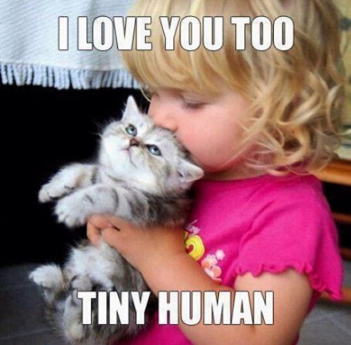 hahahaha, the cat's face!: Little Girls, Kiss, Kitty Cat, So Cute, Tiny Human, Pet, So Sweet, Animal, Kid