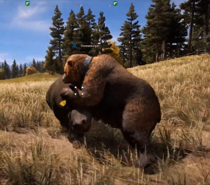 13+ Far cry 5 animals images