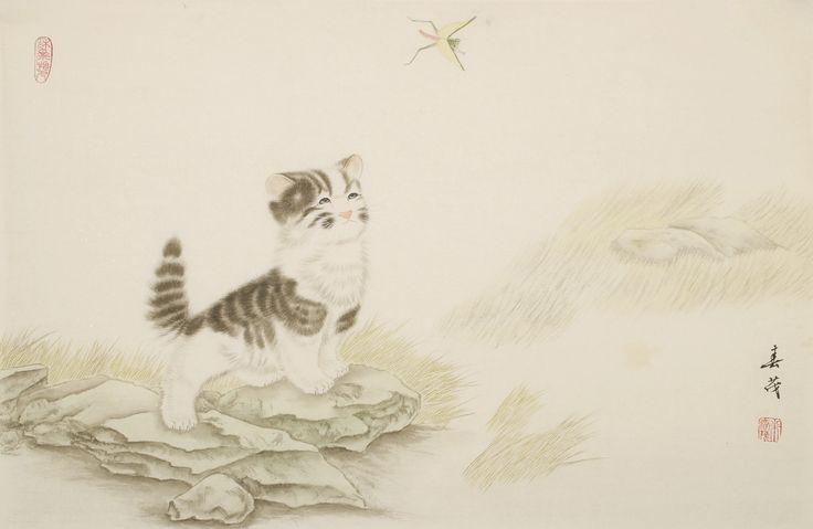 Cats - CNAG003154