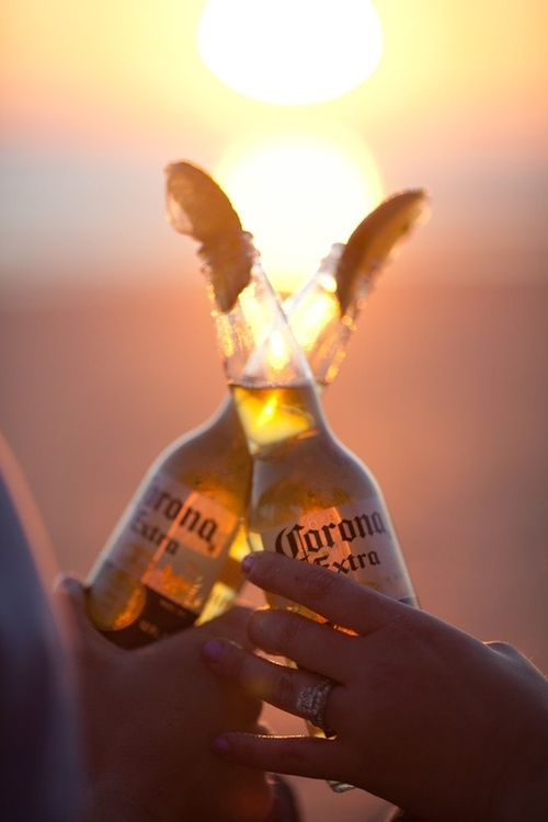 Cheers ~ ice-cold beer on a summer's evening