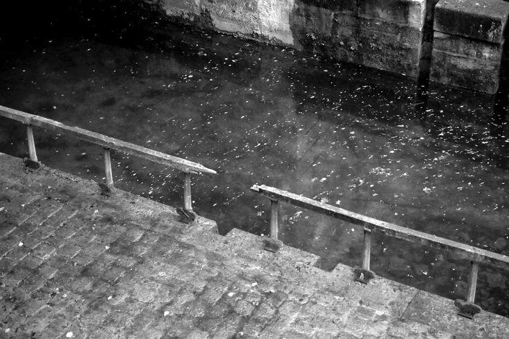 Pascale Nallet JURIC - Jean François JURIC - artiste La Rochelle - artiste ile de Ré - artiste peintre La Rochelle - Artiste Peintre ile de Ré - artiste peintre français - artiste français contemporain - peintre français contemporain - David Caron - Isabelle Vissault - Jean François JURIC - élections cantonales 2015 - élections Aytré - Périgny - Dompierre sur Mer - Puilboreau - Election Canton d' Aytré - Election canton de Dompierre sur mer - Election canton de Puilboreau