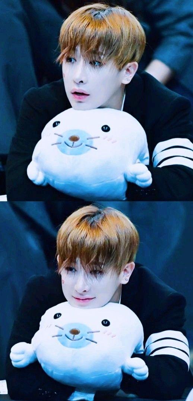 Essa foca kkkķkkk tem mais sorte que eu kkk