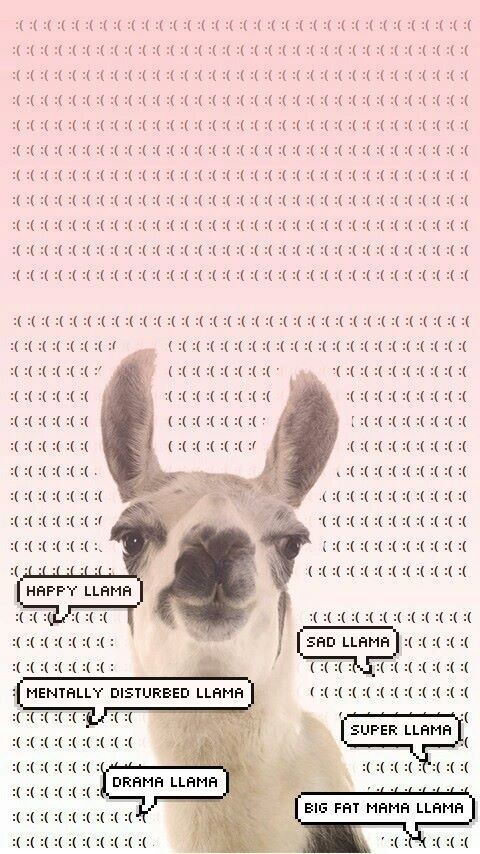 Imagem de llama, wallpaper, and twaimz Crazy wallpaper