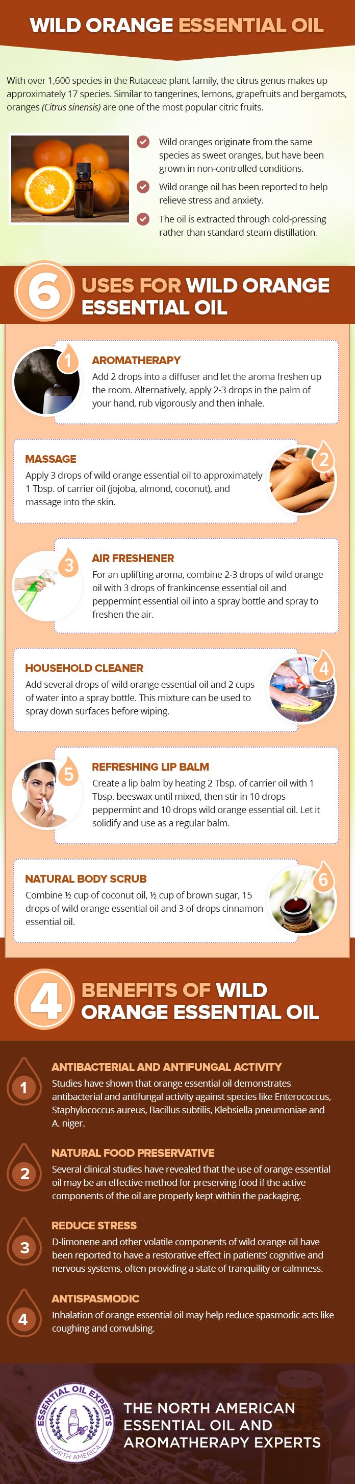 Wild Orange Essential Oil Uses & Benefits