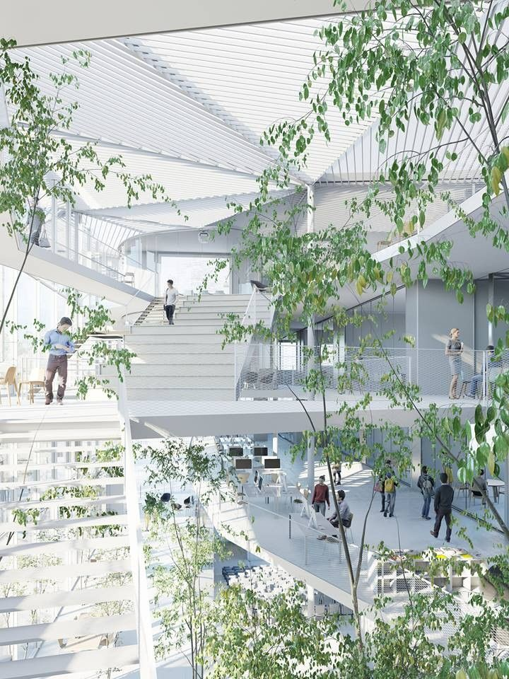 Image 4 of 16 from gallery of Sou Fujimoto-Led Team Selected to Design Ecole Polytechnique Learning Centre in Paris. Courtesy of Sou Fujimoto Architects, Manal Rachdi OXO Architects and Nicolas Laisné Associates