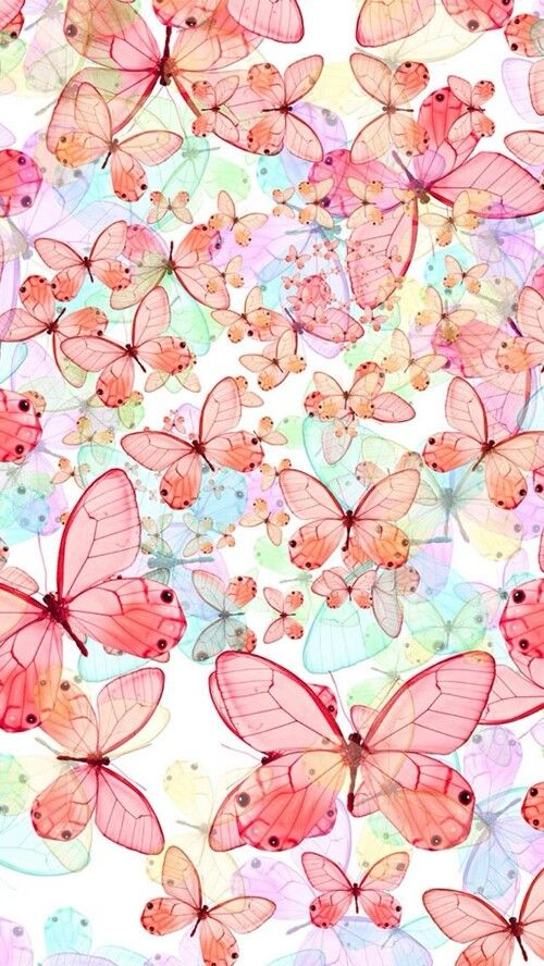 Butterflies #wallpaper