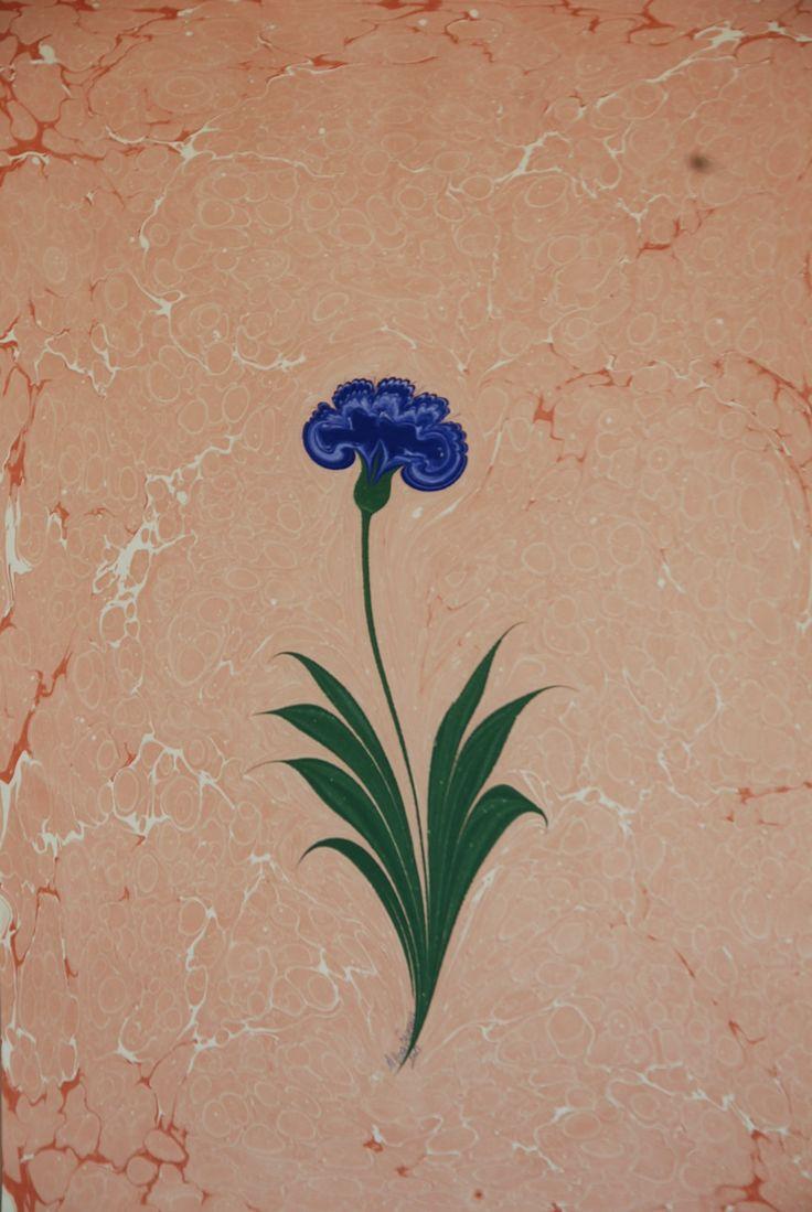 carnation marbling