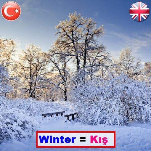 ||| #winter = #kış ||| ||| #Okunuşu = vıintır ||| • • • ||| it rains a lot in winter = kışın çok yağmur yağar ||| ▪ ▪ ▪ ||| #wordsenglish #çevirmen #çeviri #sözlük |||