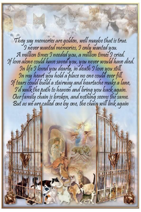 RIP beloved family pets.....we miss you!