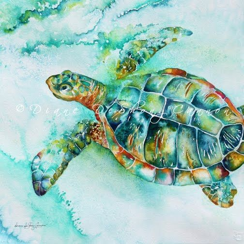 826 best images about watercolor fish shells corals on for Turtle fish paint