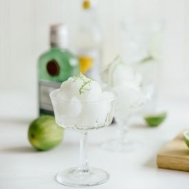 Gin and tonic, Gin and Sorbet on Pinterest