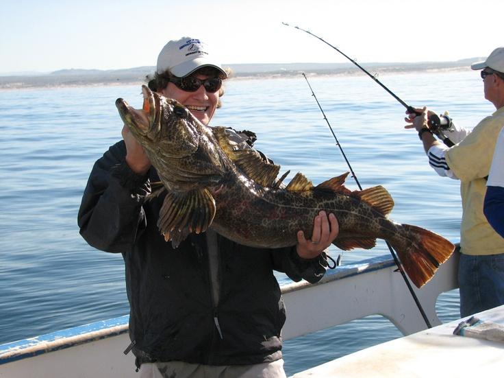 12 best avila beach california images on pinterest for Morro bay deep sea fishing