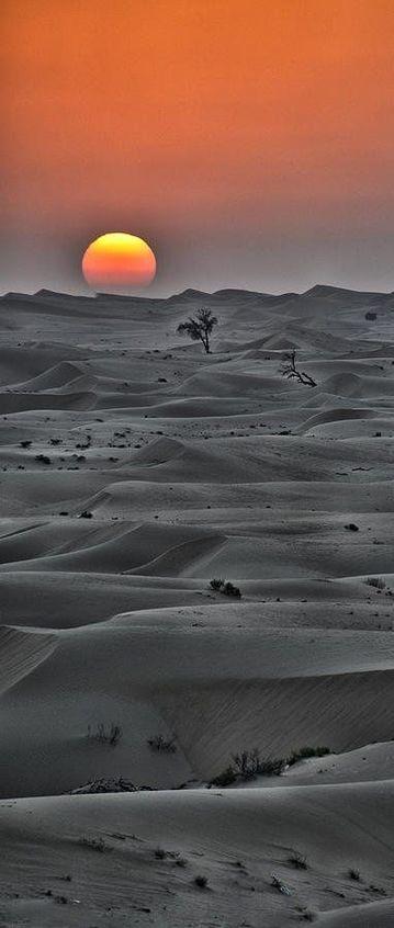 Hermosa puesta de sol en el horizonte del desierto en Abu Dhabi